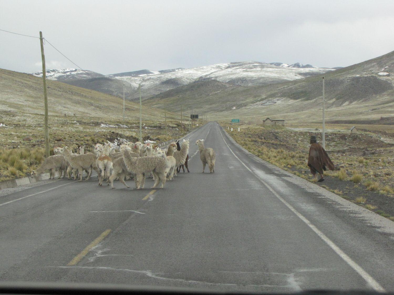 Peru-selfdrive-Condor-Travels